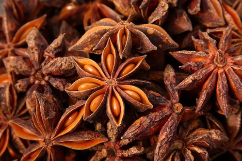 100% ESSENTIAL OIL - CHINESE ANISE